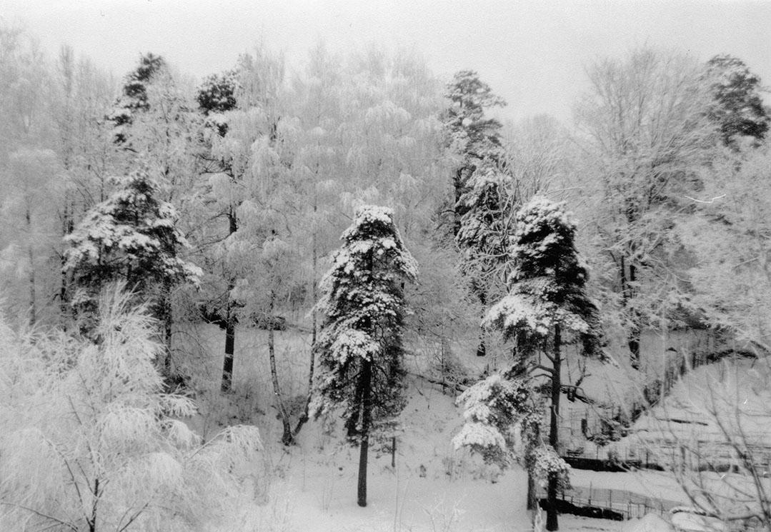 Зима в Видном, 2004 / Winter In Vidnoe. Фотограф Дмитрий Калита